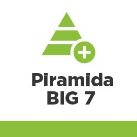 Piramida Linków Big 7